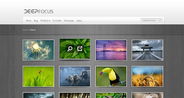 DeepFocus v5.1.6 онлайн галерея фотографий