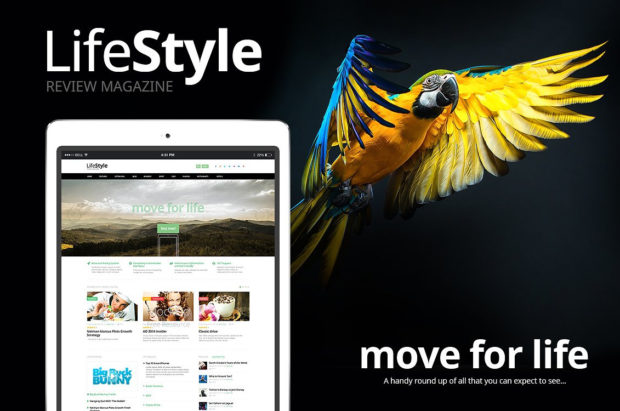 LifeStyle v1.0 для онлайн-журнала или блога